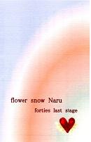 flower snow Naru~かすみ草と共に~